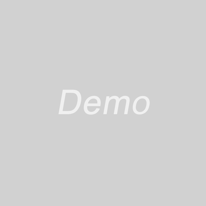 demo-img.jpg